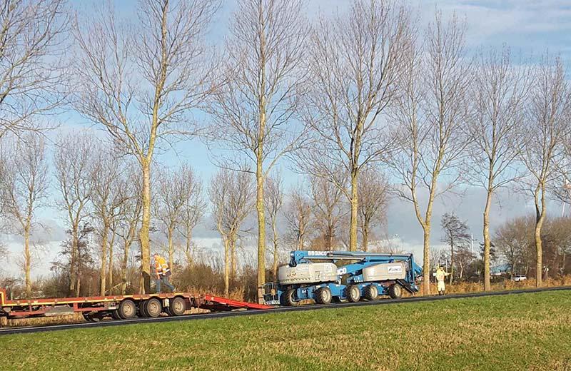 boomverzorging-onderhoud-n-wegen-overheid-provincie